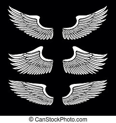 komplet, anioł, odizolowany, czarnoskóry, biały, skrzydełka