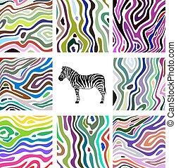 komplet, barwny, próbka, abstrakcyjny, ilustracja, zebra