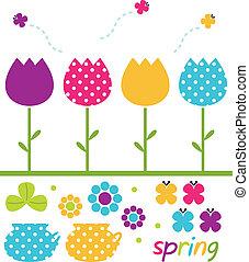 komplet, barwny, wiosna, odizolowany, tulipany, biały