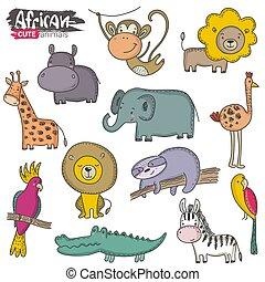komplet, barwny, zbiór, animals., wektor, dżungla, afrykanin, rysunek