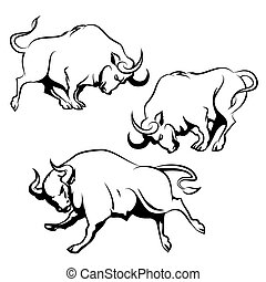 komplet, bojowy, byk