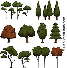 komplet, drzewa, krajobraz