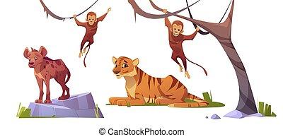 komplet, dziki, tiger, monleys, zwierzęta, rysunek, hiena