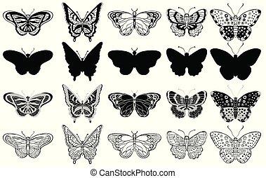 komplet, formuje, motyle, różny, czarnoskóry, biały