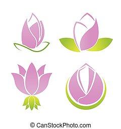 komplet, lotos, symbol, zbiór, wektor, logo