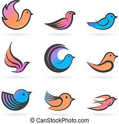 komplet, od, birds.vector, ilustracja