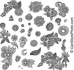 komplet, od, czarnoskóry, kwiat, projektować