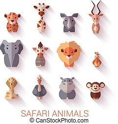 komplet, od, safari, animals., płaski, style.