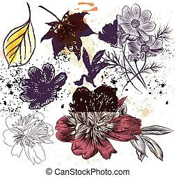 komplet, od, wektor, ręka, pociągnięty, kwiatowe elementy, w, wyryty, styl