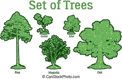 komplet, rośliny, drzewa, i, krzaki