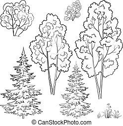 komplet, rośliny, szkic