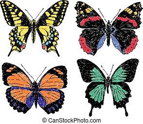 komplet, szkice, motyle, różny