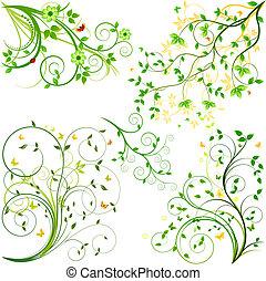 komplet, tło, wektor, kwiatowy
