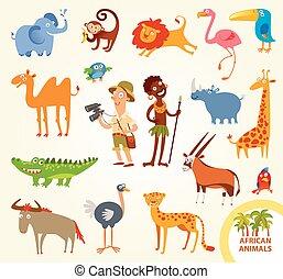 komplet, zabawny, afrykanin, mały, zwierzęta