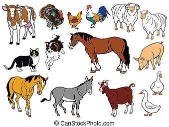 komplet, zwierzęta, zagroda