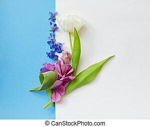 komponování, o, květiny, oproti grafické pozadí