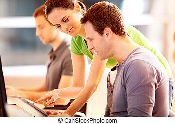komputer, grupa, młody, pracujące ludzie