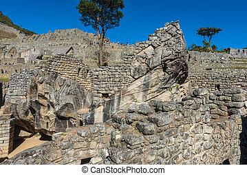 kondor, świątynia, machu picchu, gruzy, peruwiański, andy, cuzco, peru