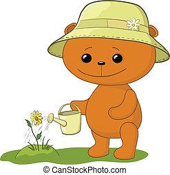 konewka, niedźwiedź, teddy