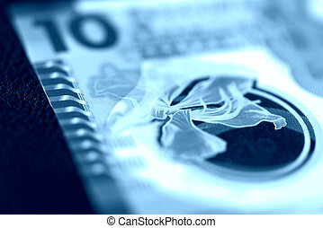 kong, hong, diez, dólares, fondo oscuro, close-up., color, toned, azul, cuenta