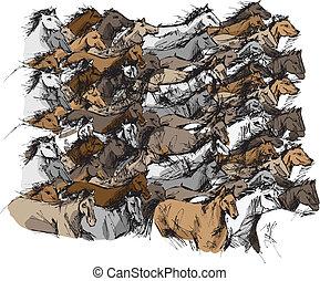 konie, rys, wyścigi