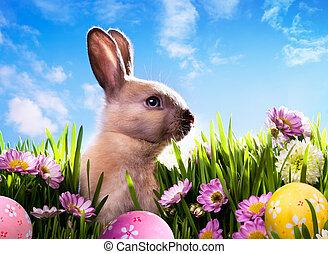 konst, baby, påsk kanin, på, fjäder, grönt gräs