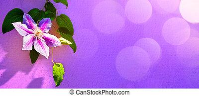 konst, beatiful, sommar, blommig, bakgrund, ram