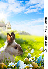 konst, färgrik, påsk eggar, och, kanin, på, grönt gräs