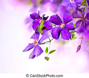 konst, flower., klematis, design, viol blommar, gräns