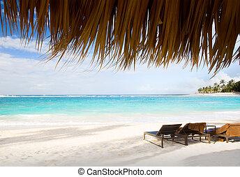 konst, semester, på, västindisk strand, paradis