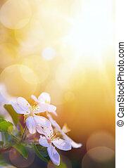 konst, vår blommar, på, den, sky, bakgrund