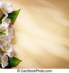 konst, vår blommar, ram, på, papper, bakgrund