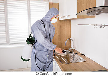 kontroll, insektsmedel, arbetare, besprutning, plåga, kök