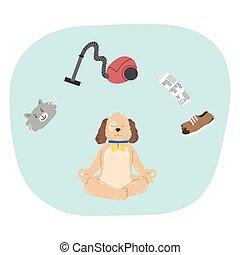 konzentrat, meditieren, schwierig, hausschlappen, über, reiniger, katz, vakuum, not, denken, hund
