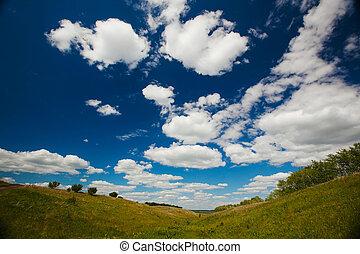 konzervativní, údolí, sky., bojiště, grafické pozadí, pastvina, nebo