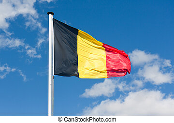 konzervativní, belgie, nad, nebe, prapor