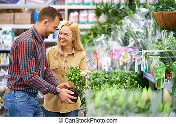 kopen, plant, of, cadeau, mamma, bloemen, paar, potten, hun