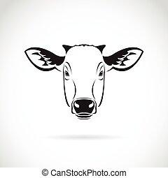 kopf, kuh, bauernhof, hintergrund., vektor, animal., weißes