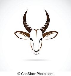 kopf, vektor, hirsch, bild, (impala)