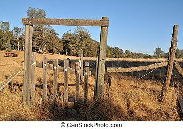 kopott, kerítés, mező, kapu