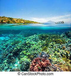 koraalrif, op achtergrond, van, vulkaan