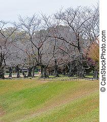 Korakuen garden in Okayama, Japan - Japanese garden of ...