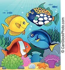 koral, fish, temat, 4, rafa, wizerunek
