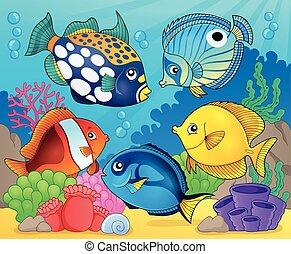 koral, fish, temat, rafa, 8, wizerunek