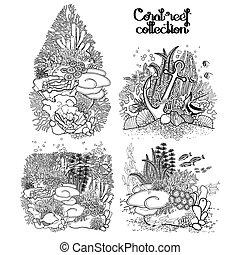 koral, graficzny, rafa, zbiór
