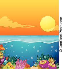 koral, pod, scena, rafa, ocean