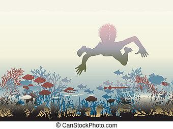 korall, felfedezés