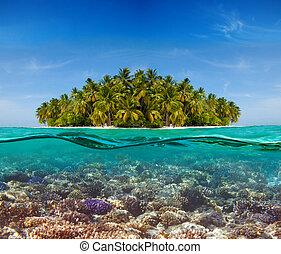 korallrev, och, den, ö