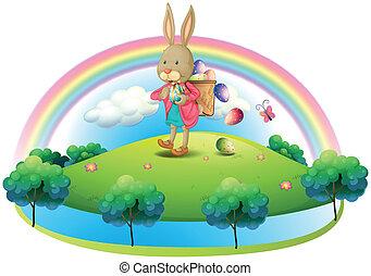 korb, eier, kaninchen