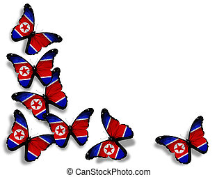 Korean flag butterflies, isolated on white background